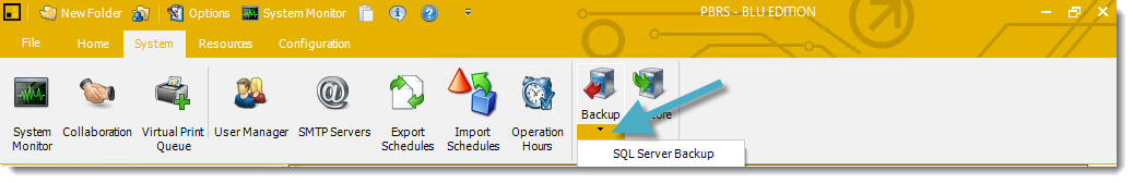 Power BI and SSRS Reports: SQL Server Backup in PBRS.