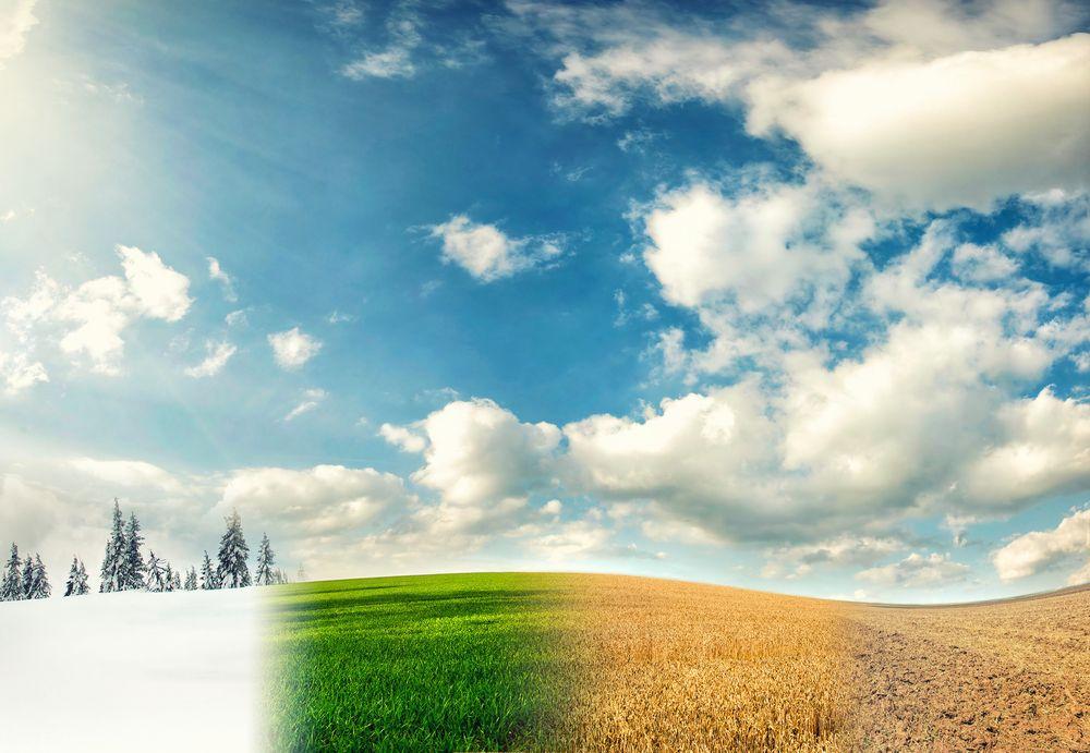 Harnessing Business Intelligence to Boost Seasonal Businesses Profit | IntelliFront BI