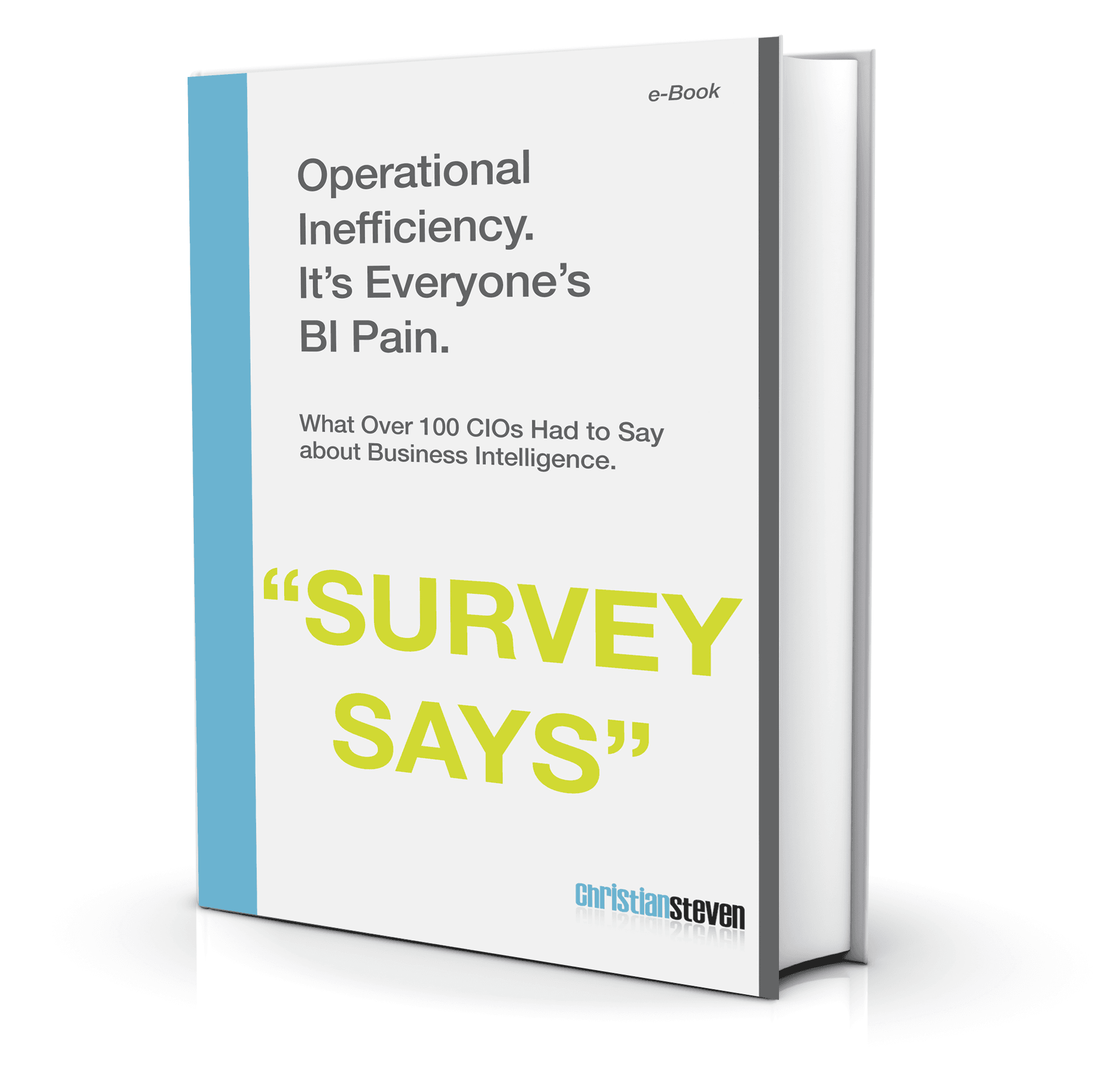 eBook: What 100 CIOs had to say about BI