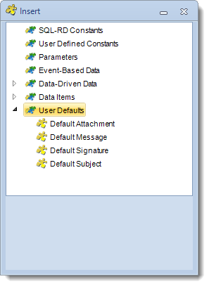 SSRS. Insert Menu: User Defaults in SQL-RD
